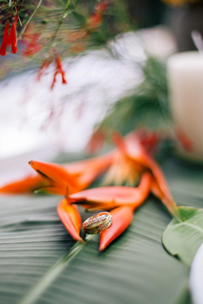 Photographe de mariage guadeloupe4